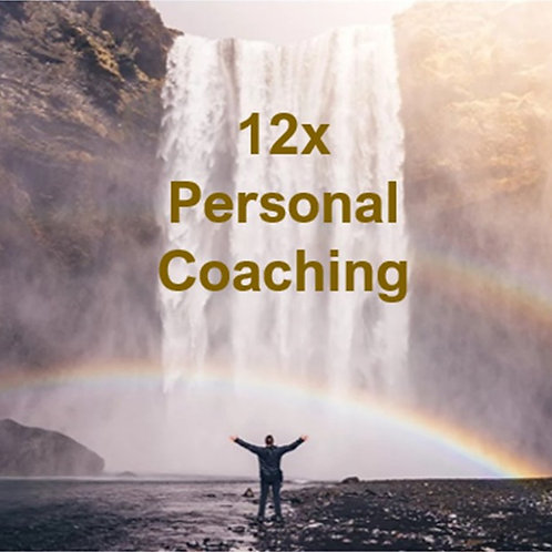 12 Personal Coaching Sessions
