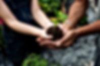 two hands 2.jpg