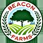 beacon-logo-84.png