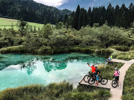 Mountain biking holidays in Slovenia
