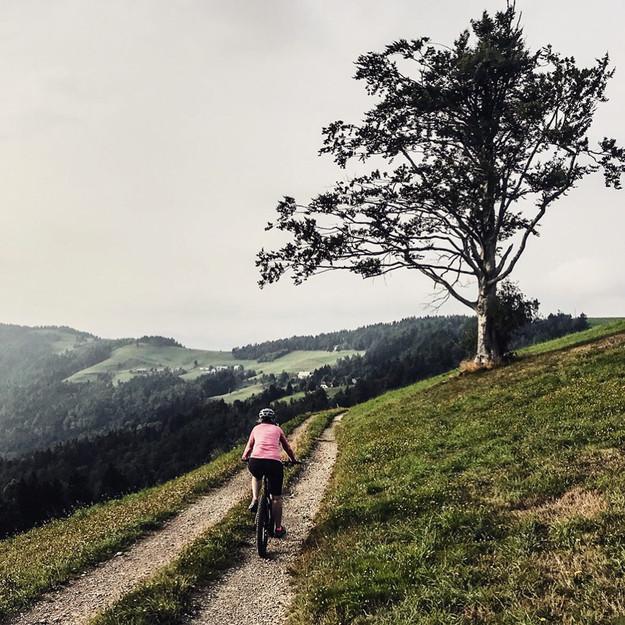 Ljubljana countryside