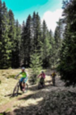 Poljanska dolina mountain biking
