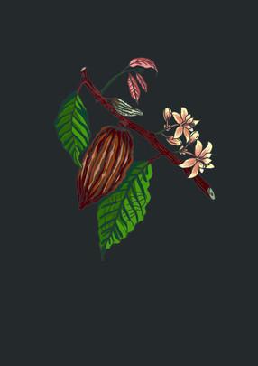 Digital Illustration for LOLLINO