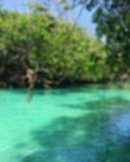 Vanuatu-Web.jpg