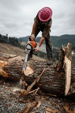 BD-LoggingPreview-32.jpg