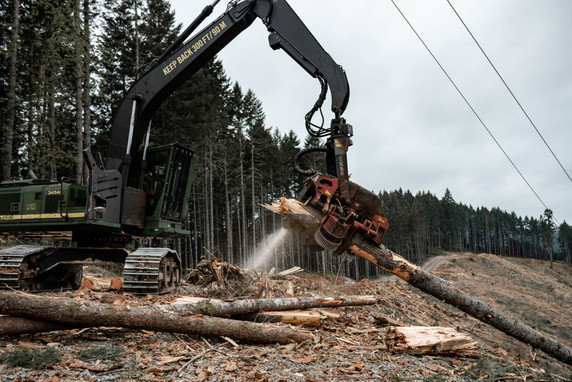 BD-LoggingPreview-10.jpg