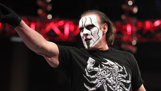 Sting Comments On Surfer Gimmick, On How Recognizable He Is In Public...