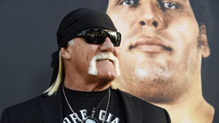 Hulk Hogan Comments On nWo Reunion & More...
