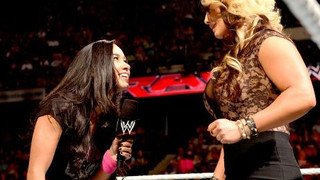 Kaitlyn's Secret Admirer: A Golden Opportunity Missed By The WWE
