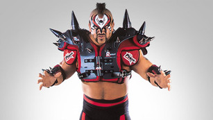 Road Warrior Animal, One Of The All Time Tag Team Greats Passes Away At Age 60