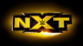 WWE NXT Star Considering Going Back To Japan?