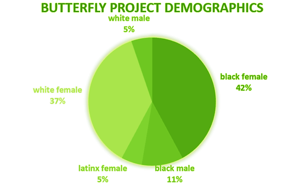 Demographic Breakdown recolored.png