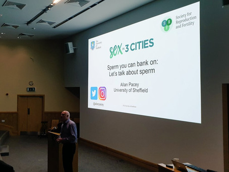Sex in Three Cities - Prof Allan Pacey