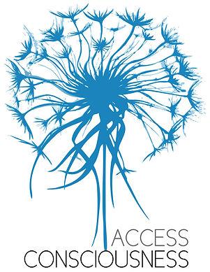 Access bar consciouness Toulouse