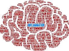 anti-inflammatory_edited_edited_edited_edited.jpg