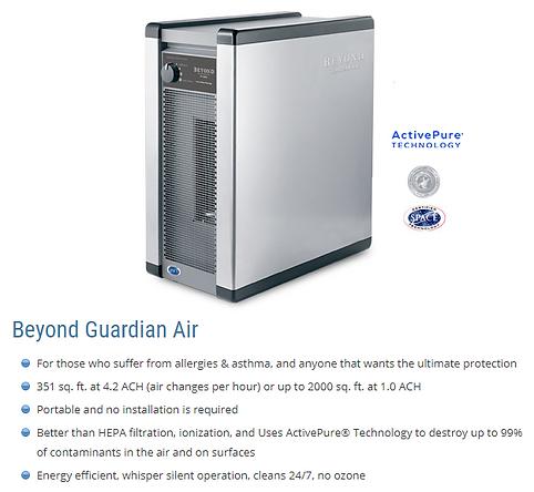 Beyond Guardian Air website.png