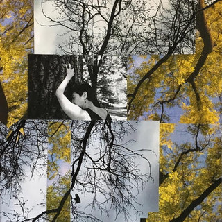 """Central Park Saved My Life, Photo Collage, 14"""" x 17"""", 2020, $350"""