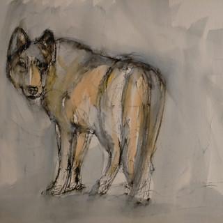 Wolf III, 2021, $425
