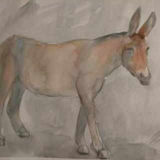 Donkey VIII, 2021, $425