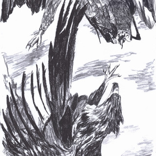 Mid Air Flight no.5, Charcoal on Paper, 2020