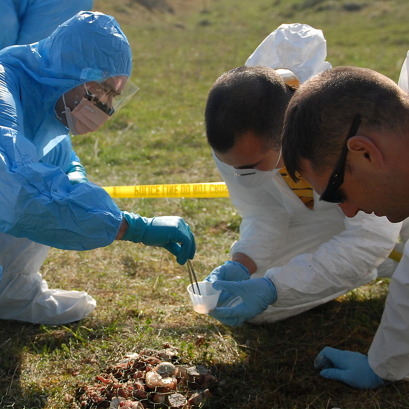 Hands-on Evidence Collection