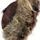 Thumbnail: Casual lammeskinnslue med Toscana lammepels - mørkbrun
