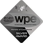 wpe_silver.png