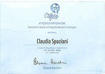 Diploma Cifoto 2018