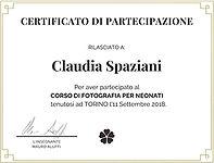 Diploma Mentoring Newborn Mauro Aluffi