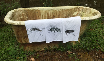 MOSQUITO, FLY, COCKROACH TEA TOWELS