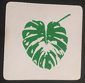MONSTERA LEAF DISPOSABLE COASTER HAND PRINTED