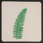 FERN FROND DISPOSABLE COASTER HAND PRINTED