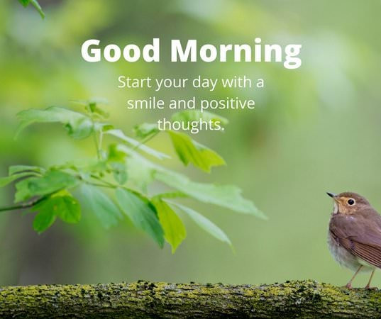 Good-Morning.jpg