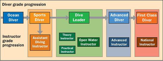 diver_progression_chart.jpg