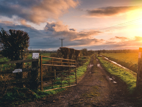 Farmers, Don't Make These Five Estate Planning Mistakes