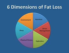 6 dimensions of fat loss