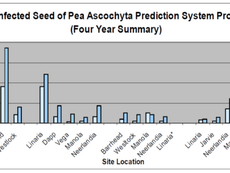 Ascochyta Disease Levels on Field Pea Seed and Beneficial Management Practices