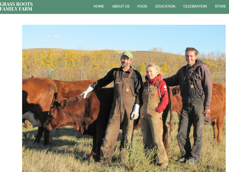 Grass Roots Family Farm: Redefining Holistic Management