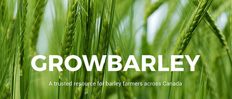 Grow Barley's new site