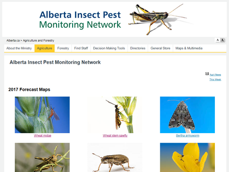 Alberta Pest Forecast Maps Now Available