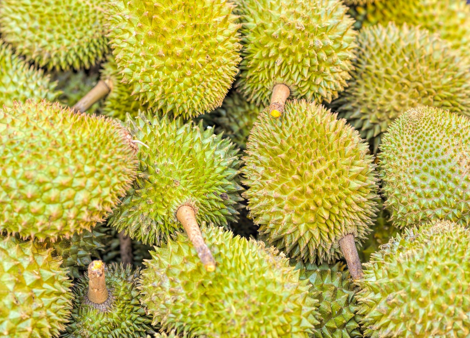 'China only imports premium durian'