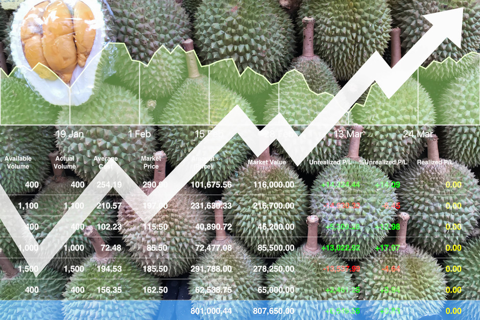 Ministry targets RM350m durian export to China this year