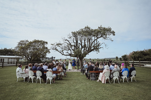 Jess and Lewis' New Plymouth Wedding (84