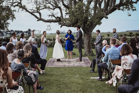Jess and Lewis' New Plymouth Wedding (83