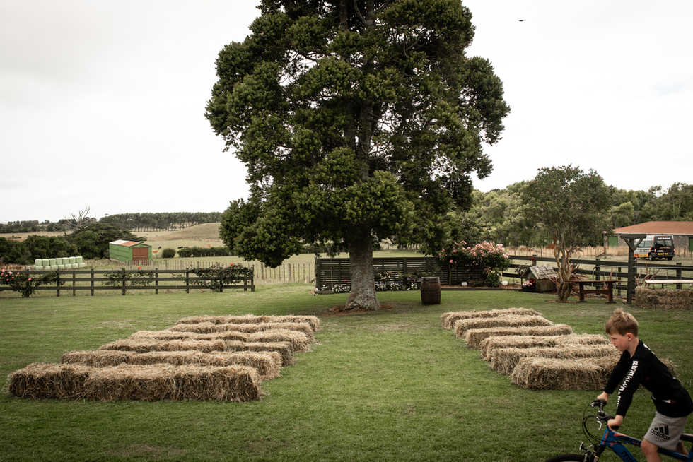 Philipa and Duncan's backyard Taranaki w