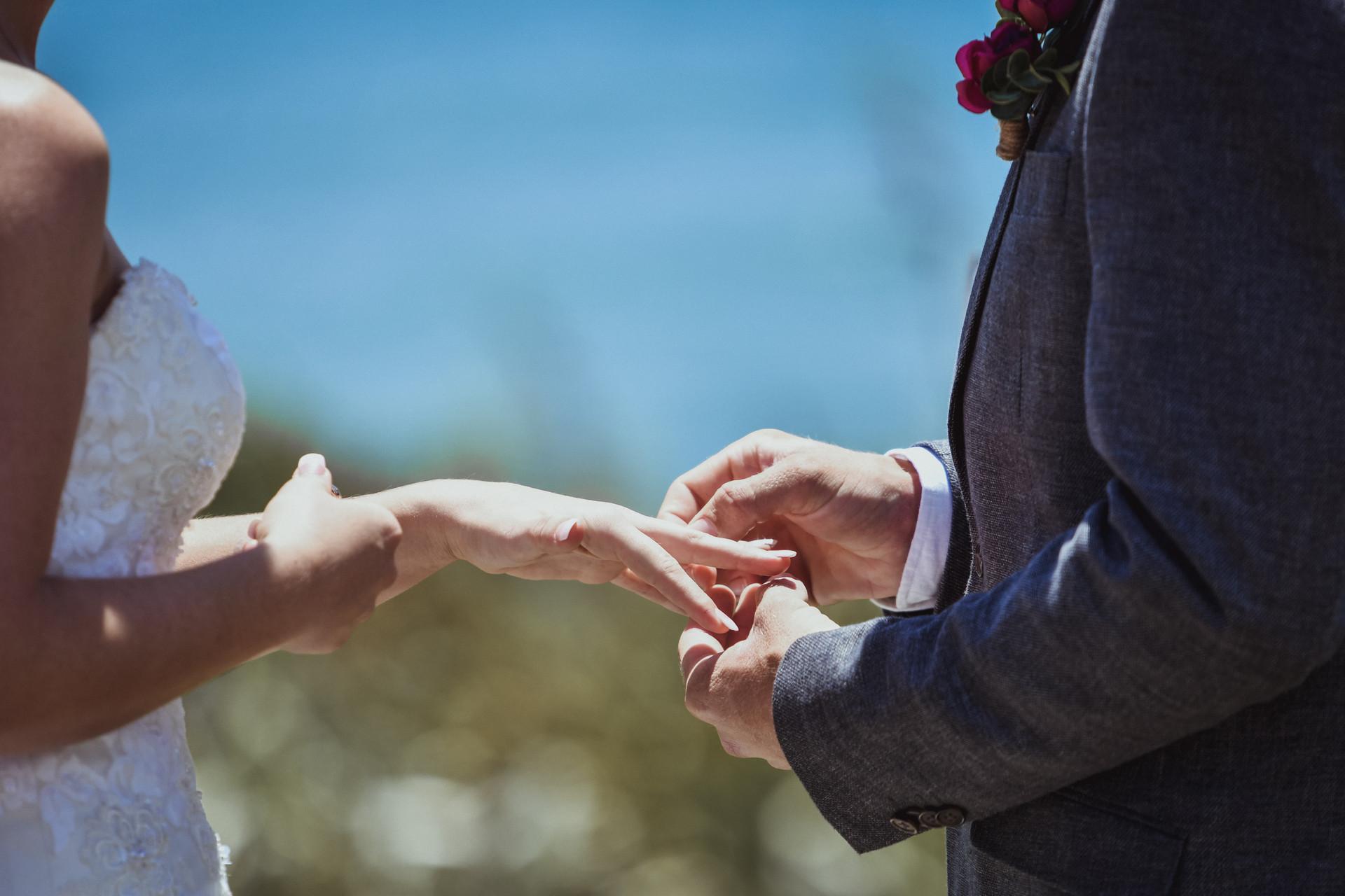 Cassie and Stuart's Taranaki Wedding  (7