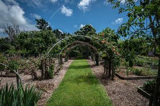 New Plymouth Taranaki Wedding Venues (60