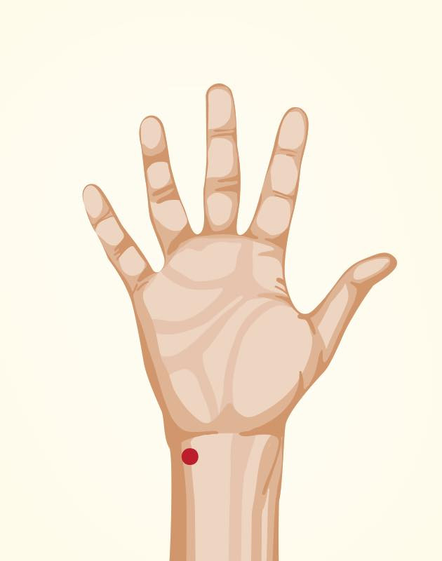 acupuntura florianopolis