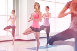 yoga Florianópolis