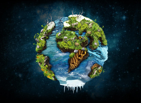 Der Earth Overshoot Day 2019